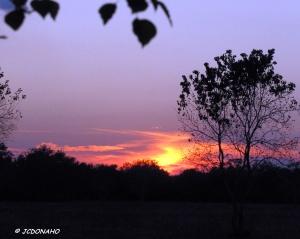 November Sunset 2