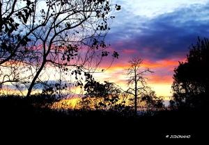 Fall Sunset - Southeast Texas